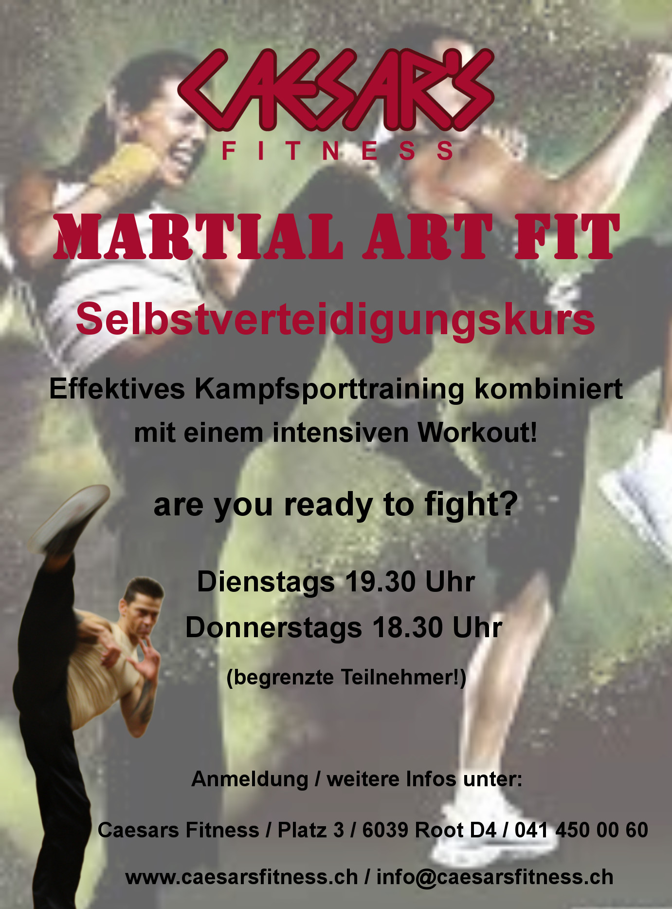 martial-art-fit-flyer